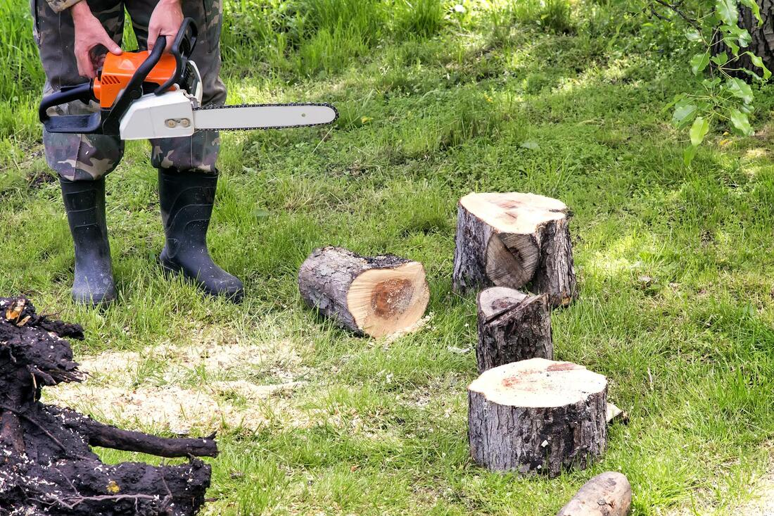 Tree Service-Carrollton TX Professional Landscapers & Outdoor Living Designs-We offer Landscape Design, Outdoor Patios & Pergolas, Outdoor Living Spaces, Stonescapes, Residential & Commercial Landscaping, Irrigation Installation & Repairs, Drainage Systems, Landscape Lighting, Outdoor Living Spaces, Tree Service, Lawn Service, and more.